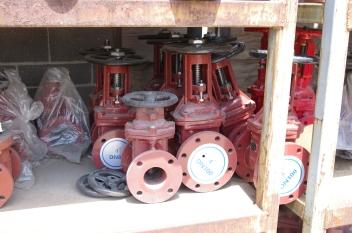 water mane valve